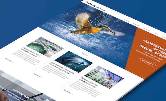 Alltech Coppens - Corporate website - Craft CMS - Header